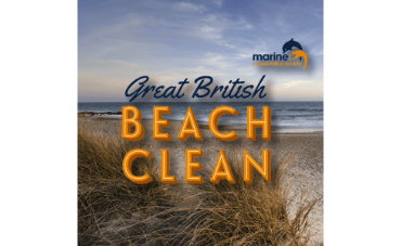 Great British Beach Clean!